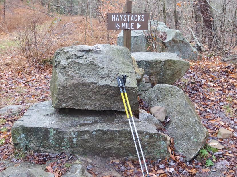 Explore | Hiking the Loyalsock Link Loop