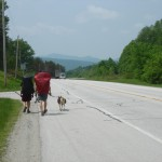 Gantz, Straw, and Brickhouse walking towards town, VT. Photo by Shona Paterson.